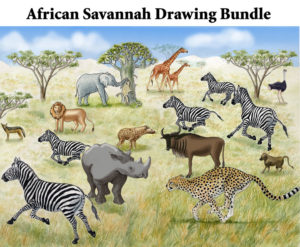 african_savannah_drawing_bundle_art72