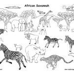 African Grassland Animals (Labeled)