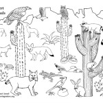 American Desert Animals (More)