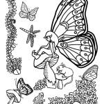 Fairy and Drangonfly