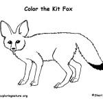 Fox (Kit)