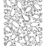 Frogs – Color and Pattern