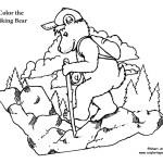 Hiking Bear