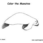 Manatee (Florida)