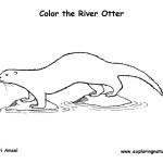 Otter (River)