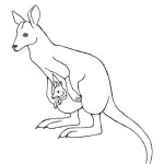 Wallaby (Agile)
