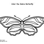 Butterfly (Zebra)