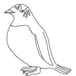 Penguin (Gentoo)