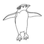 Penguin (Rockhopper)