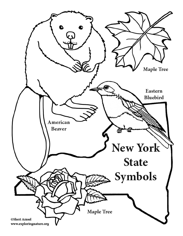 Free Us Symbols Coloring Pages